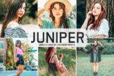Last preview image of Juniper Mobile & Desktop Lightroom Presets