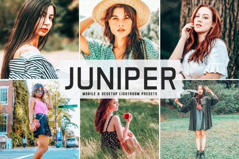 Preview image of Juniper Mobile & Desktop Lightroom Presets