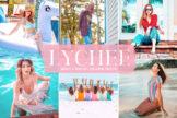 Last preview image of Lychee Mobile & Desktop Lightroom Presets