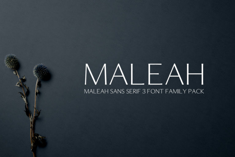 Preview image of Maleah Sans Serif 4 Font Family Pack