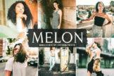 Last preview image of Melon Mobile & Desktop Lightroom Presets