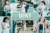 Last preview image of Mint Mobile & Desktop Lightroom Presets
