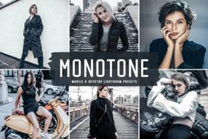 Monotone Mobile & Desktop Lightroom Presets
