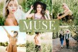 Last preview image of Muse Mobile & Desktop Lightroom Presets