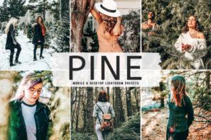 Pine Mobile & Desktop Lightroom Presets