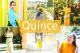 Last preview image of Quince Mobile & Desktop Lightroom Presets