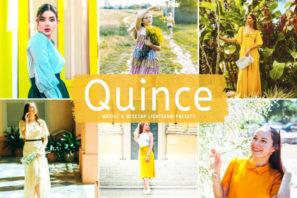 Quince Mobile & Desktop Lightroom Presets