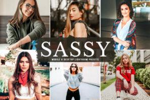 Sassy Mobile & Desktop Lightroom Presets