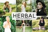 Last preview image of Herbal Mobile & Desktop Lightroom Presets