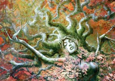 Driad, book cover illustration