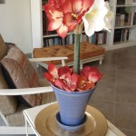 A Topiary Style Floral Centerpiece Will Beat The Heat Creative Jewish Mom