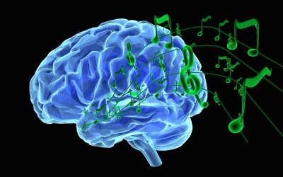 Play Music: Brain Plasticity