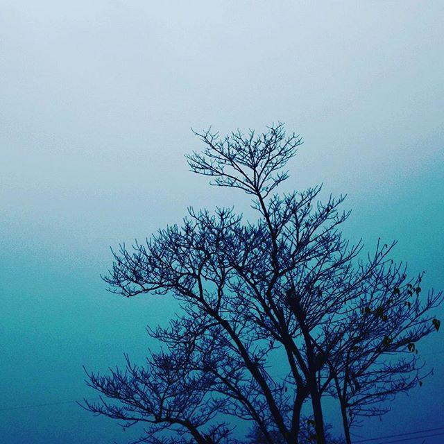 Instagram favorite photography clicks of Creative Khadija
