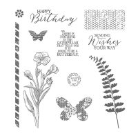 butterfly basics stamp set, stampin Up, #creativeleeyours, wendy lee