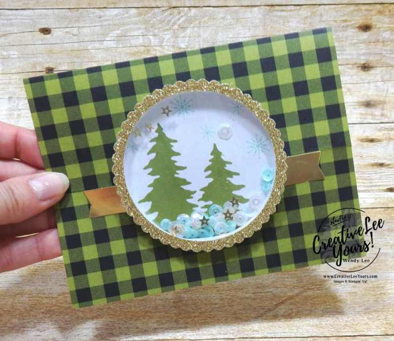easel shaker October 2017 Pining For Plaid Paper Pumpkin Kit by wendy lee, shaker christmas cards, handmade, stamping, masculine, Stampin Up,#creativeleeyours, creatively yours, fast and easy, simple