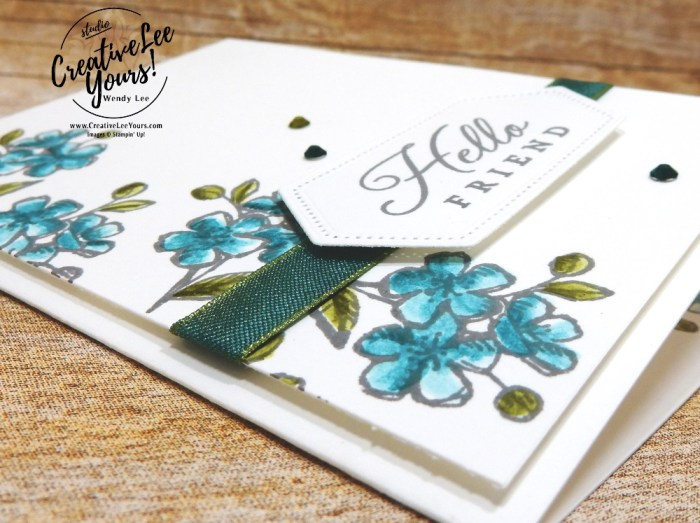 Hello Friend by wendy lee, May 2019 Hug's from Shelli Paper Pumpkin Kit , stampin up, handmade cards, rubber stamps, stamping, kit, subscription, #creativeleeyours, creatively yours, creative-lee yours, birthday, celebration, graduation, anniversary, alternate, bonus tutorial, fast & easy, DIY, #simplestamping, limited edition, birds, collectible, spring, elegant, feminine, video, card kit, feathers, catalog kickoff