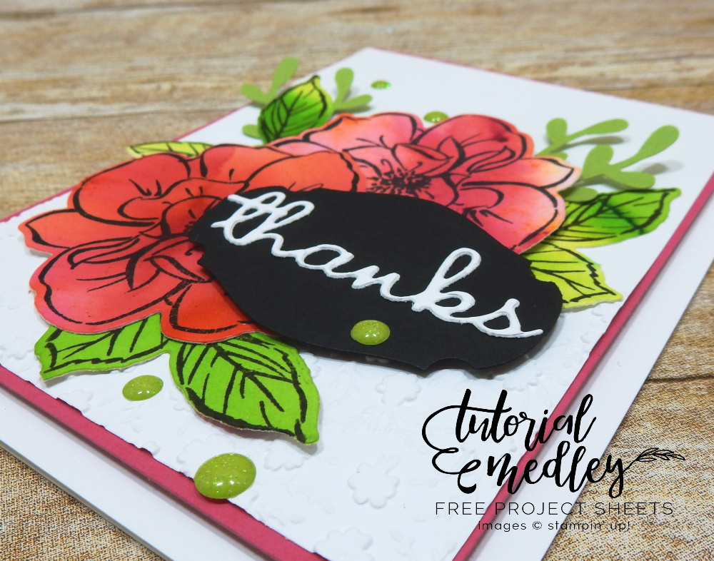To A Wild Rose Thanks by Wendy Lee, stampin Up, SU, #creativeleeyours, handmade card, To A Wild Rose stamp set, hugs, friend, celebration, flowers, watercolor, pigment sprinkles, #cardmaking, #handmadecard ,#rubberstamps, stamping, creatively yours, creative-lee yours, DIY, card class, tutorial, paper crafts, tutorial medley, newsletter, card class, well written dies, retiring products #papercrafting , #makeacardsendacard ,#makeacardchangealife , #diemondsteam businessopportunity, ornate flowers