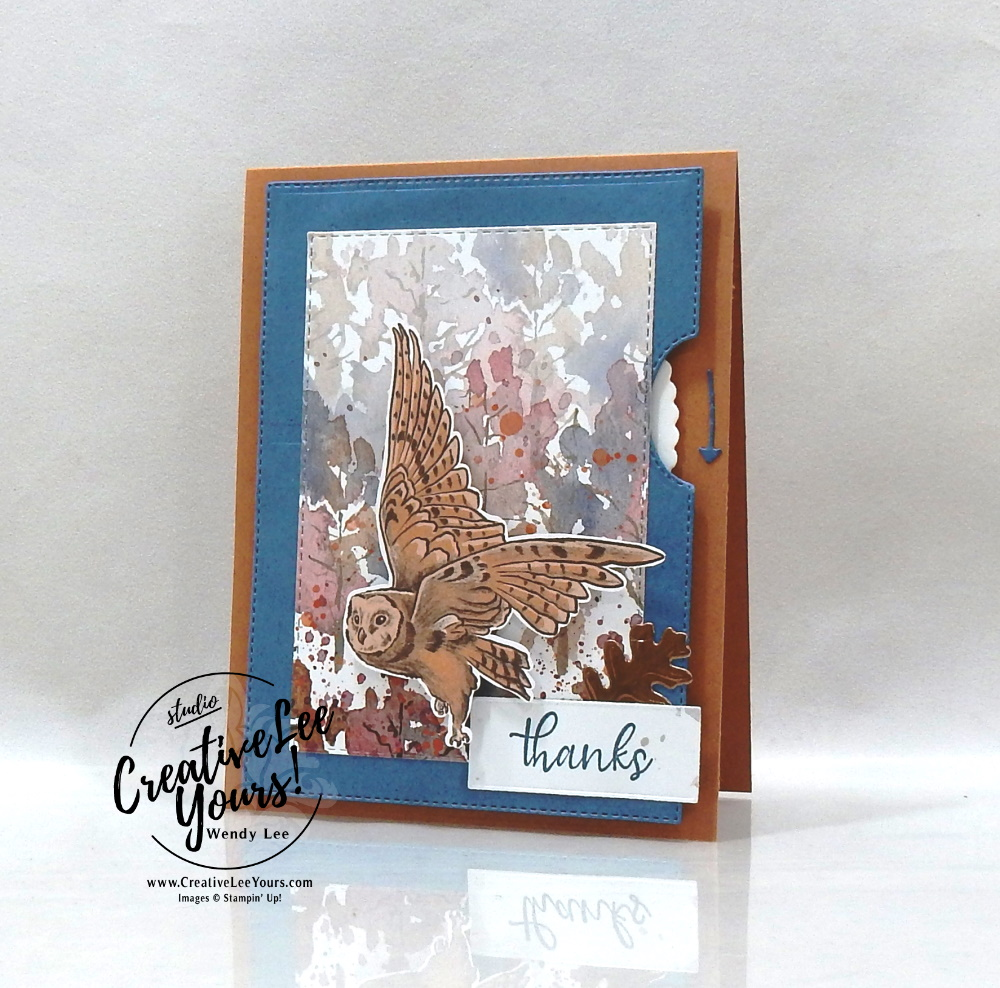 Flying Owl Spinner by wendy lee, #creativeleeyours, creatively yours, creative-lee yours, DIY, SU, rubber stamps, class, thank you, birthday, Simply Succulents stamp set, birthday, thinking of you, #stampinup, #stampinupdemonstrator, #love, #cardmaking, #handmadecard, #rubberstamps, #stamping,#tutorial ,#tutorials, #papercrafts , #papercraft , #papercrafting , #papercraftingsupplies, #papercraftingisfun, #papercraftingideas, #makeacardsendacard ,#makeacardchangealife, video,#cardclasses ,#onlinecardclasses, #livepapercrafting, #facebooklive, #card, #videotutorial#masculine, #sympathy, #beautyoftomorrow, #beautyoftheearth, fall, autumn, nature,#beautyoftomorrow, #blackberrybeauty, #spinnercard, #giveitawhirl, #fallcards, #whirlycard, #interactivecards