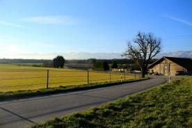 Golden-fields
