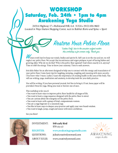 Pelvic Floor Workshop