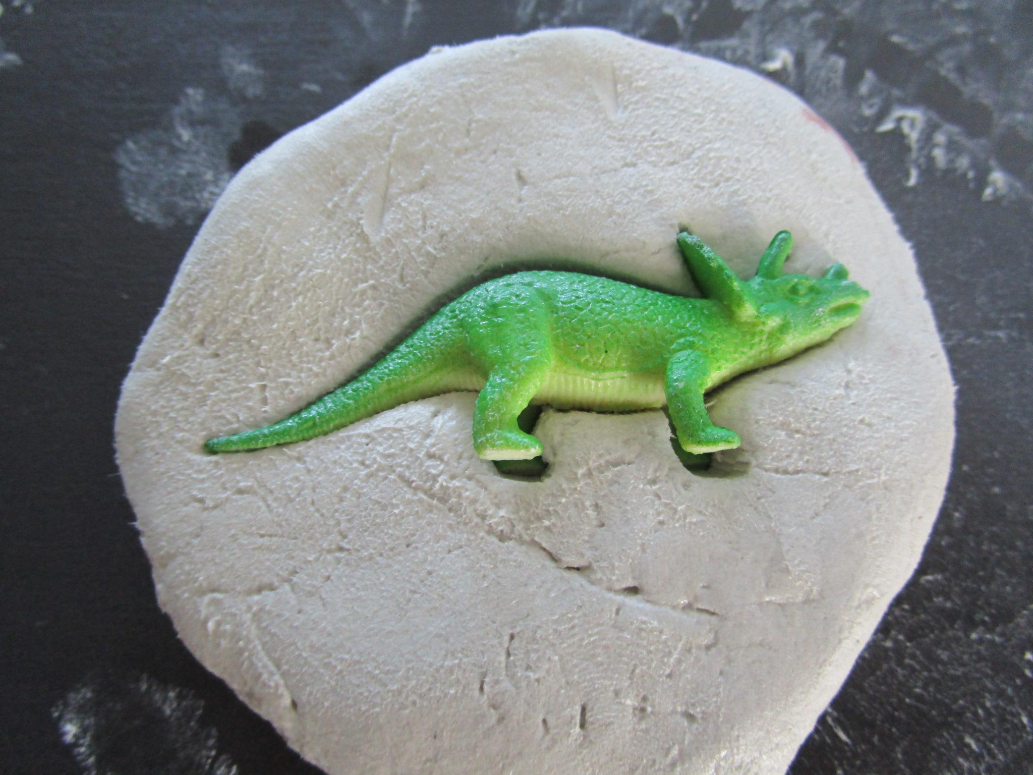 r 233 aliser des fossiles de dinosaures 224 peindre avec les enfants