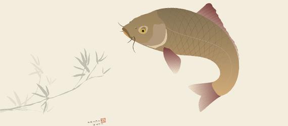 japanese-koi-carp-illustration