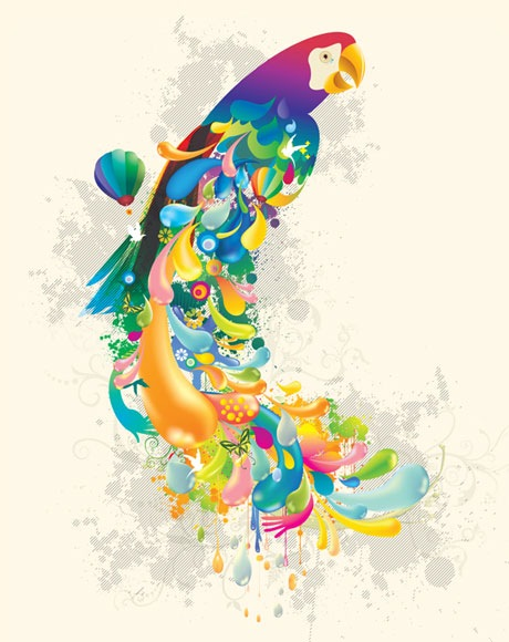 color-bird-vector-inspiration