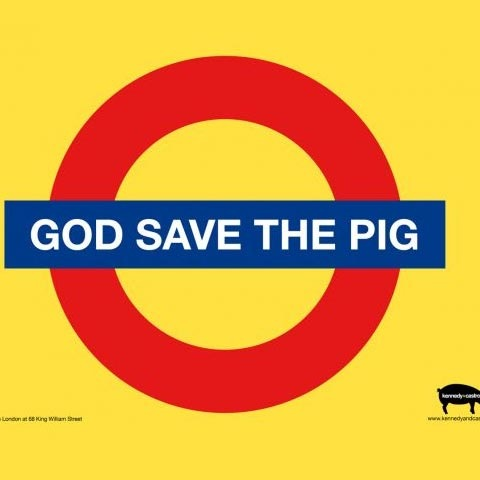 god-save-pig