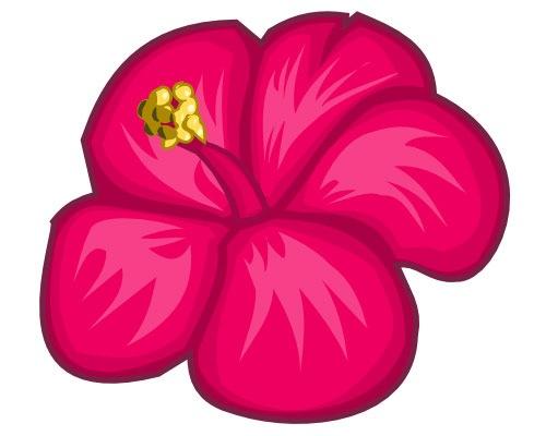 hibsus-flower