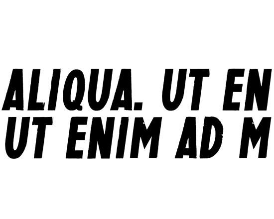 aliqua