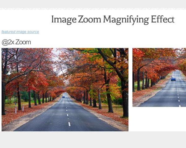 image-zoom
