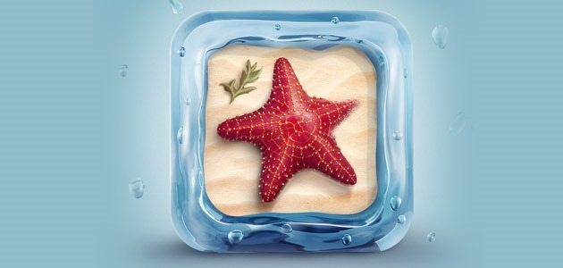 star-fish-icon