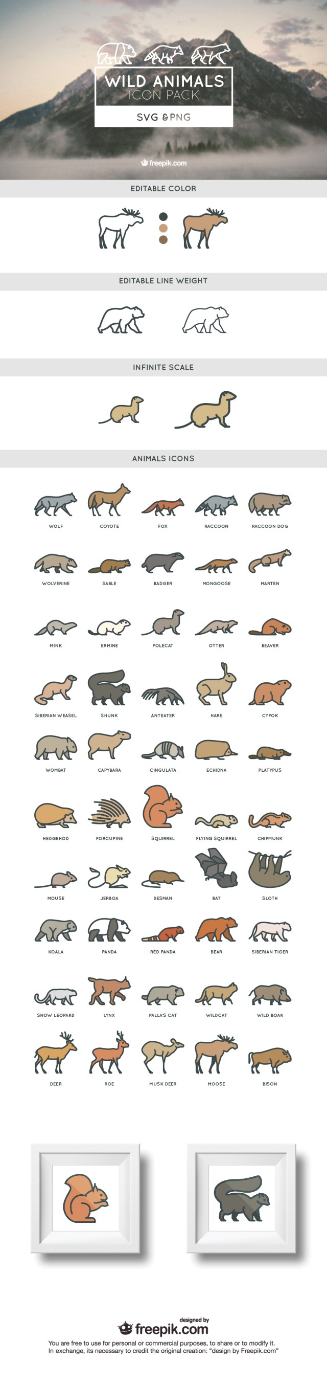 ANIMALS_COVER-01-01