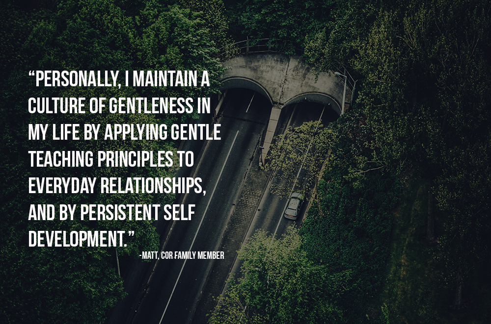 Personally I maintain a culture of gentleness in my life by applying gentle teaching