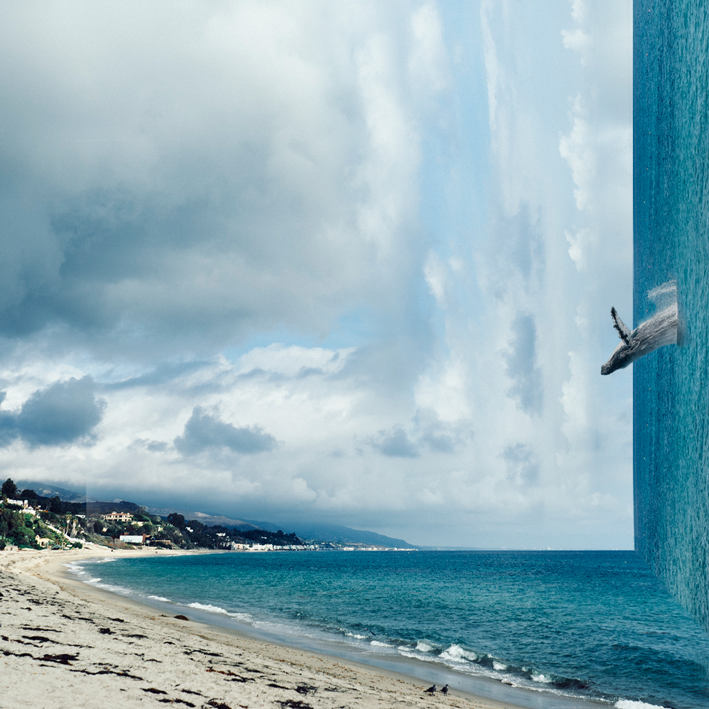 Photo Manipulation  By VICTORIA SIEMER  Creative Safari