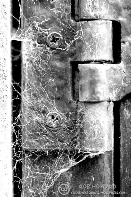 closeup of an old door hinge