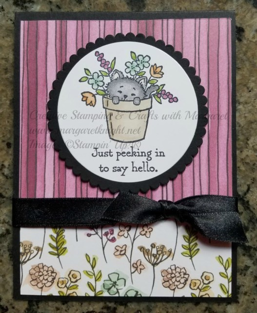 Stampin' Up! Pretty Kitty Stamp Set, Stampin' Blends, Share What You Love Designer Series Paper