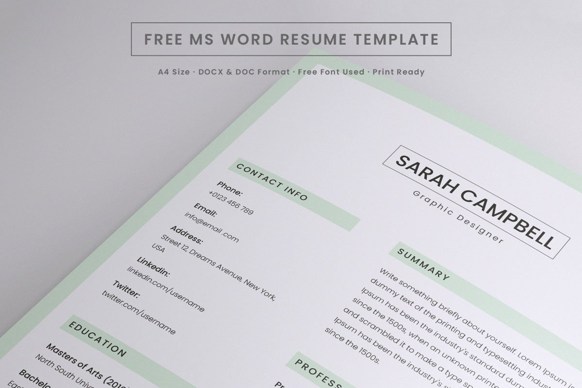 Free Resume Word Template Free Resume Microsoft Word Template Creativetacos