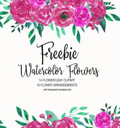 free watercolor flower clipart collection [ 1200 x 800 Pixel ]