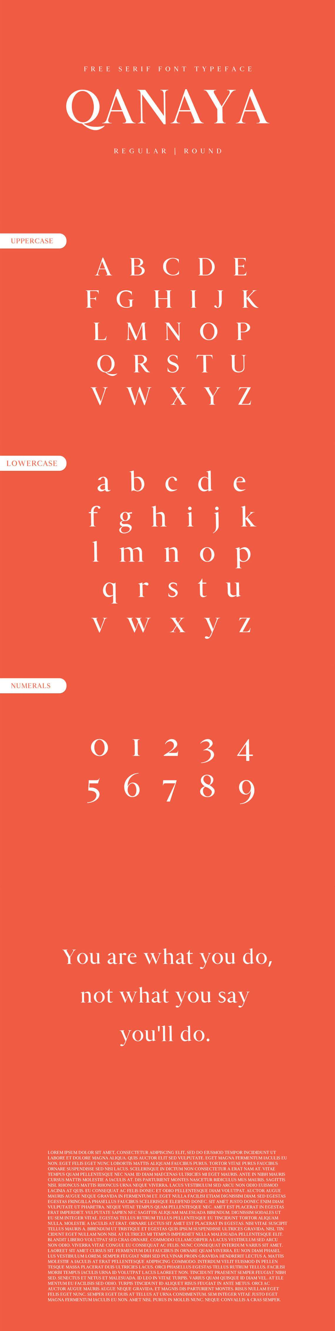 Download Free Qanaya Serif Font Family Pack ~ Creativetacos