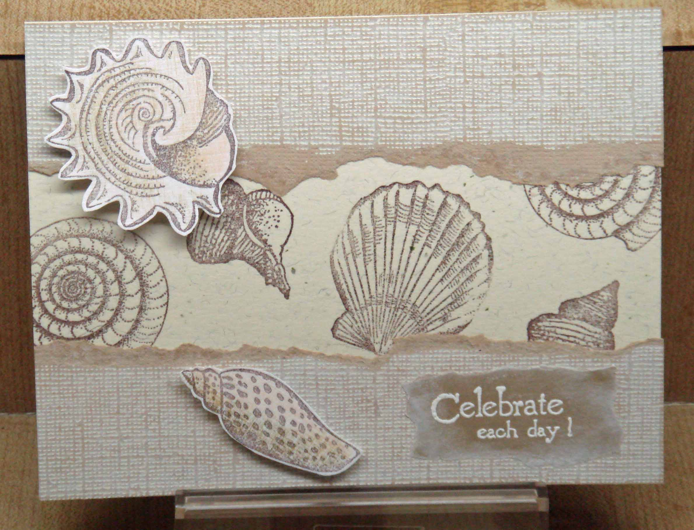 coredinations sea shells