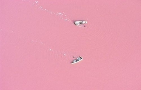 The pink waters of Lake Retba in Senegal
