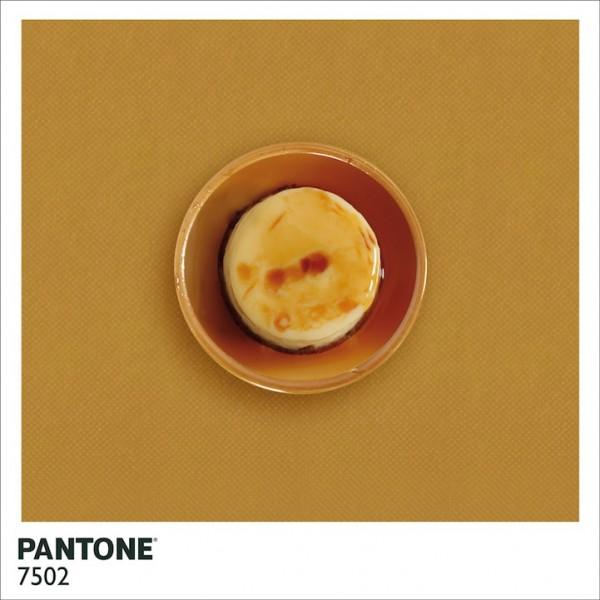 PantoneFood7