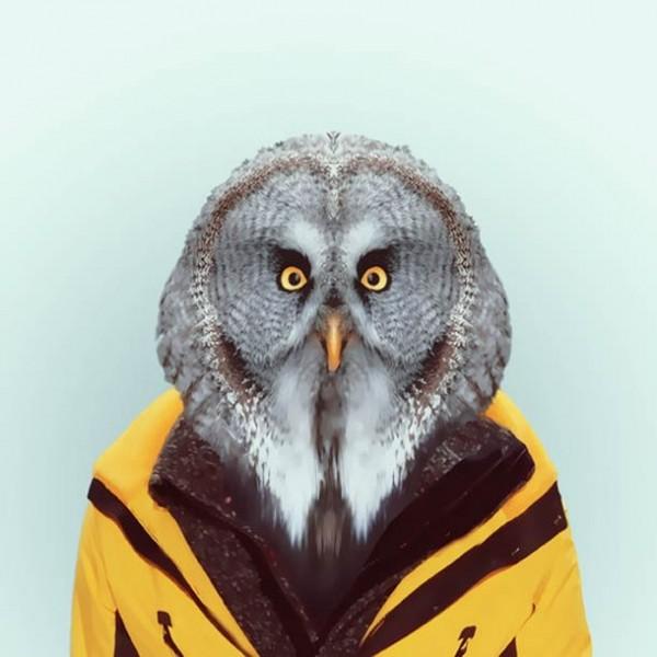 Zoo-Portraits-Yago-Partal-1