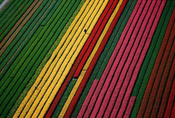 aerial-photography-yann-arthus-bertrand-20