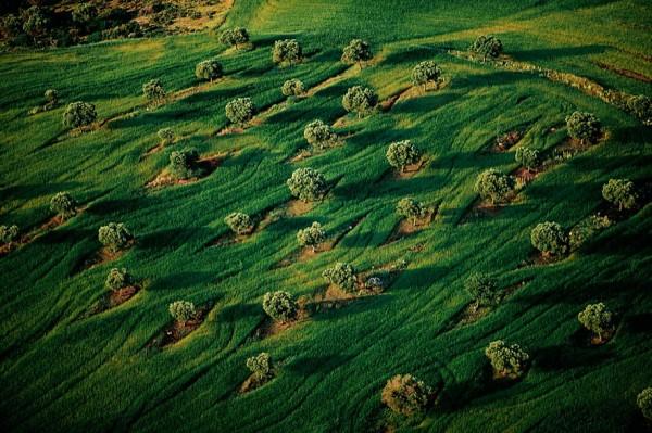 aerial-photography-yann-arthus-bertrand-22