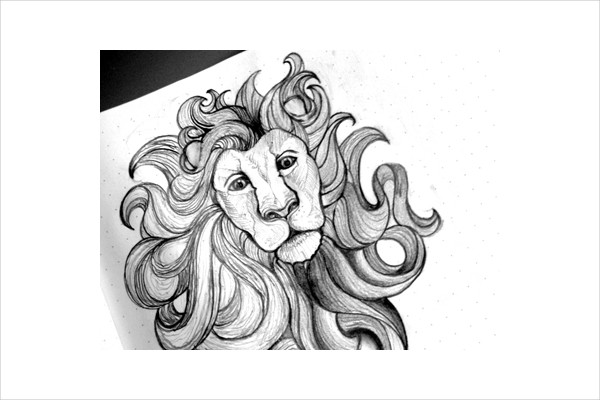 Shading Lion Drawing