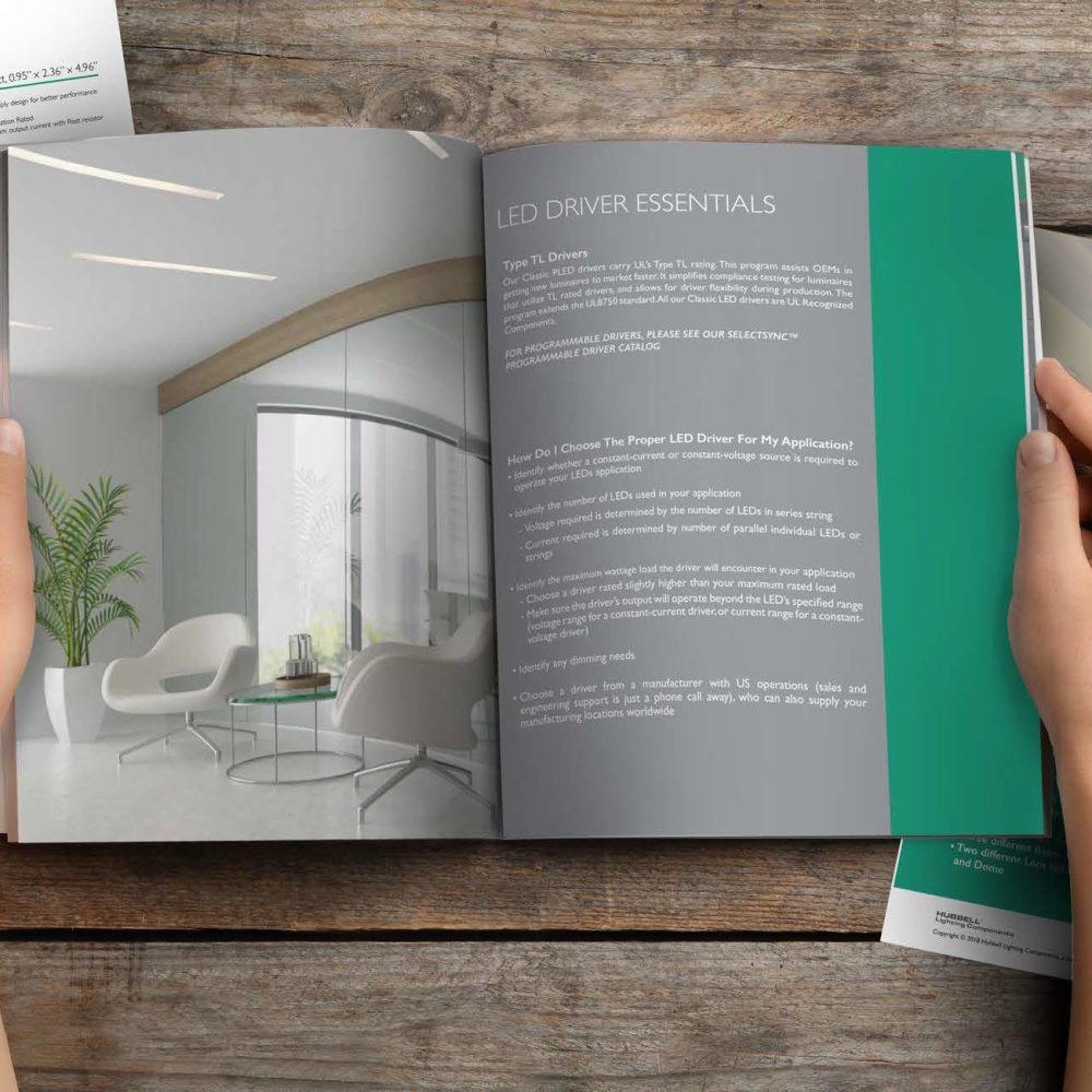 Rebranding: Catalog, Brochure, and Flyer