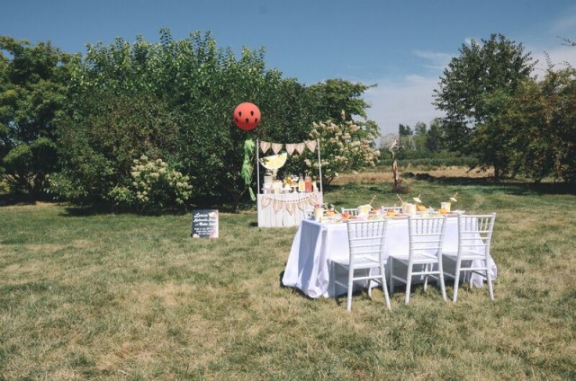 lemon and melon themed party
