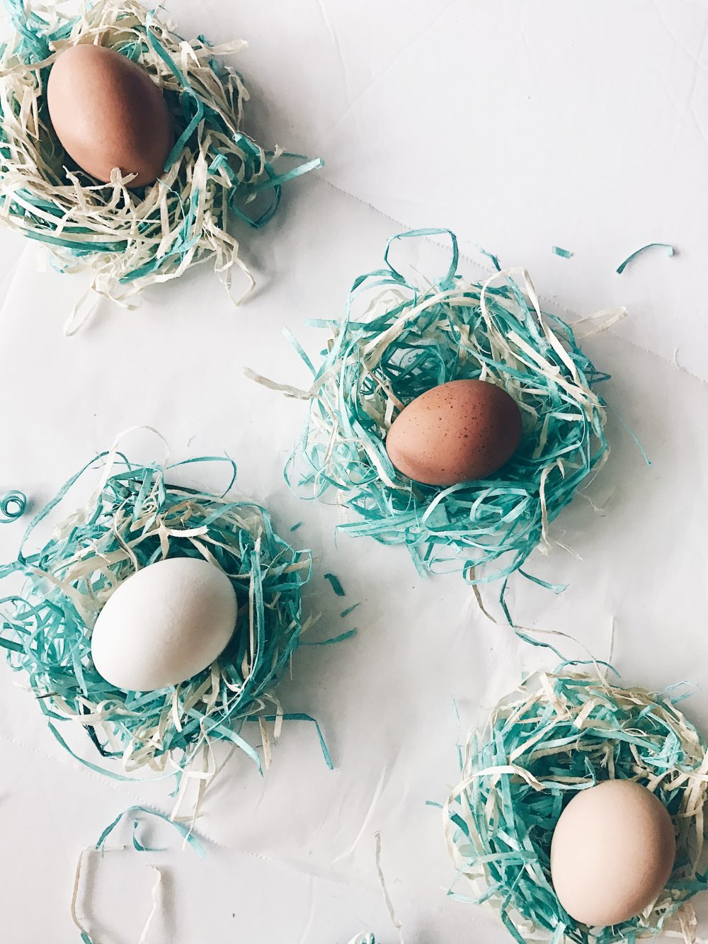 DIY Baby Birds Nest from Easter Basket Shavings
